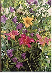 Perennials. The Time-Life Encyclopedia of…