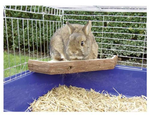 Niteangel Natural Wooden Platform for Rabbits, Chinchilla and Guinea Pigs, Large Size