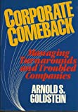 Corporate Comeback, Arnold S. Goldstein, 0471844888