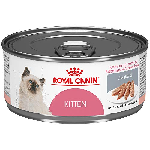 Royal Canin Feline Health Nutrition Kitten Loaf In Sauce Canned Cat Food, 5.8 oz Can (Case of 24)