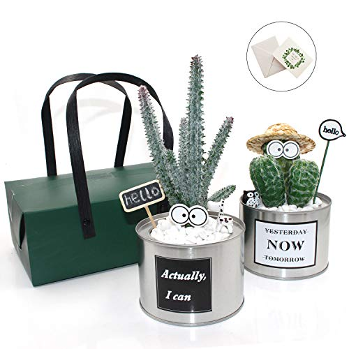 YOCEAN Mini Artificial Plants, 2 Pack Fake Green Cactus Faux Succulent Cacti Potted with Silver Can Pot and 4 Stickers for Home Office Desk Bedroom Kitchen Bathroom Bookshelf Decor