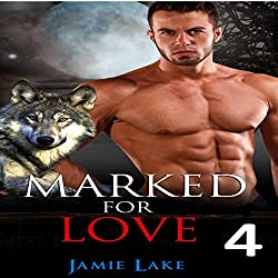 Marked for Love, Book 4