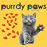 40-Pack Soft Nail Caps For Cat Claws ORANGE LARGE Purrdy Paws