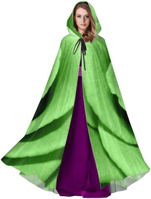 Yushg Alcachofa cruda en Capa de Disfraz de Capullo Abierto con ...