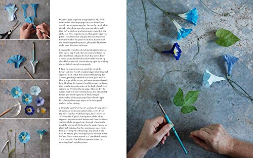 The Fine Art of Paper Flowers: A Guide to Making Beautiful and Lifelike Botanicals by Watson-Guptill (Image #6)