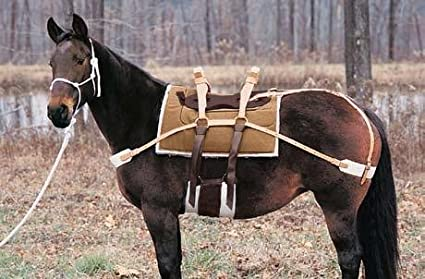 Amazon com : Weaver Double Rigged Sawbuck Pack Saddle : Sports