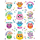 Carson Dellosa Colorful Owl Motivators Motivational Stickers (168144)