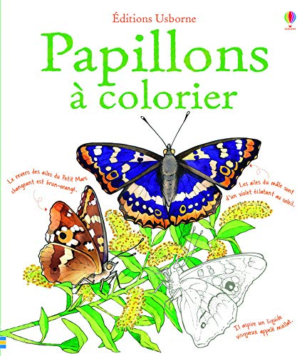 Papillons A Colorier Motifs Et Coloriages French Edition