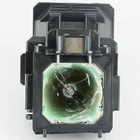 SANYO PLC-XT35L Replacement Projector Lamp 610-335-8093 / LMP116