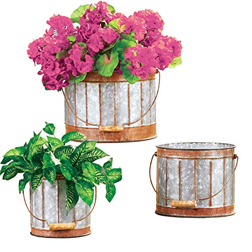 Amazon Com Rustic Galvanized Metal Planters With Handle And Rust