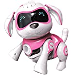 Yeezee Girl's Remote Control Dog, Interative Little Baby Pup with Magent Bone, Walking Talking Remote Control Dog, Robot Pet for Kids/Boys/Girls (RR-1)