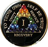 1 Year Black Rainbow Swarovski Crystal Tri-Plate AA Medallion Chip
