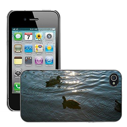 Bild Hart Handy Schwarz Schutz Case Cover Schale Etui // M00134004 Enten Tier Vogel Natur // Apple iPhone 4 4S 4G