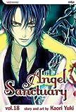 Angel Sanctuary, Vol. 18