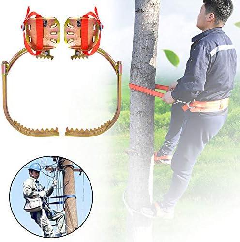 ツリークライミングスパイク-狩猟観察狩り用ツリークライミングツール-ノンスリップクライミングツリースパイク、電気技師クライミングツリーフットバックル、使いやすい,600type