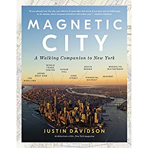 Magnetic City Audiobook