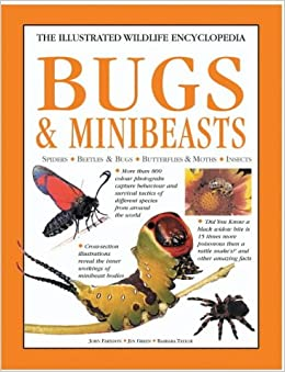 Bugs & Minibeasts (The illustrated wildlife encyclopedia)