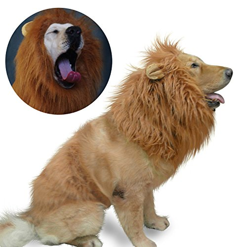 Cute Girl Dog Costumes (Lion Mane Costume,Lion Mane for Dog and Big Dog Lion Mane Wigs Fancy Dress Clothes Dog Apparel for Halloween Party-Large Dog Costumes by IN HAND)
