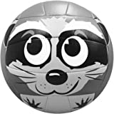 Molten MS500 racoon Racoon Volleyball