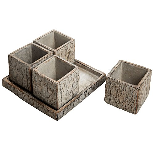 3 inch Rustic Brown Clay Succulent Planter Pots Container with Removable Drainage Tray Saucer, Set of ()