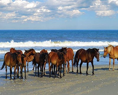 Heritage Beach Party Jigsaw Puzzle - 1000 Pieces - Horses by the Ocean by Heritage Puzzle