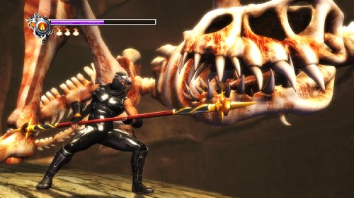 Amazon.com: Ninja Gaiden Sigma (PlayStation3 the Best) [New ...