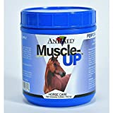 AniMed Muscle-Up with Probiotics for Horses, 25-Pound