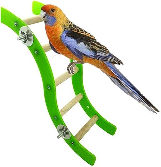 Keersi - Escalera de Juguete para pájaros para Loros, periquitos, periquitos, cacatúas, cacatúas, Pinches, Canarios, cacatúas africanas y Grises: Amazon.es: Productos para mascotas