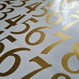 Traditional Style Self Adhesive Numbers by Stonebrae and Strath (4 inch 2 pack, Soft Gold)