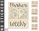 Baby Age Blocks - NO STICKERS - 20 Color Scheme Options! (Example: Floral) - Baby Milestone Blocks