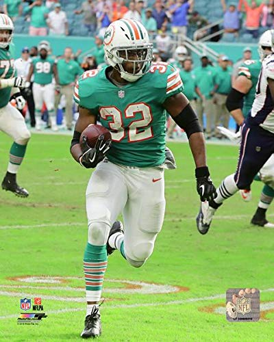 Dolphins Kenyan Drake Miami Miracle 8