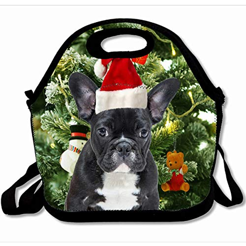 - Ahawoso Reusable Insulated Lunch Tote Bag Holiday French Bulldog Christmas Tree Ornaments Snowman 10X11 Zippered Neoprene School Picnic Gourmet Lunchbox