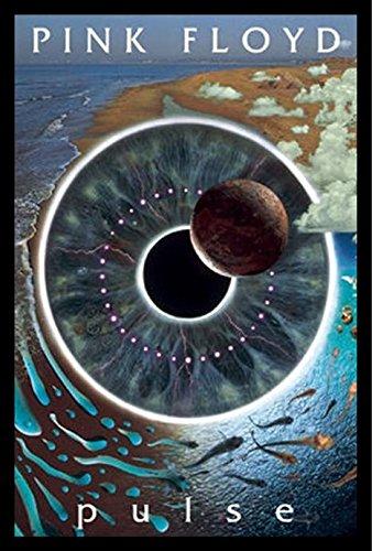 Buyartforless If Aq 24921 36X24 1 25 Black Plexi Framed Pink Floyd   Pulse Eyeball Vision 36X24 Music Art Print Poster