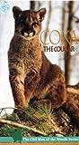Wildlife: Coka The Cougar [VHS]