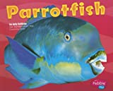 Parrotfish, Jody Sullivan and Capstone Press Staff, 0736861335