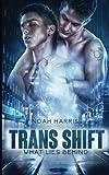 Trans Shift: What Lies Behind