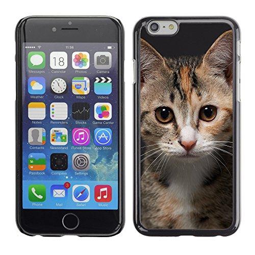 """Premio Sottile Slim Cassa Custodia Case Cover Shell // V00003706 photo pour la carte d'identité // Apple iPhone 6 6S 6G PLUS 5.5"""""""