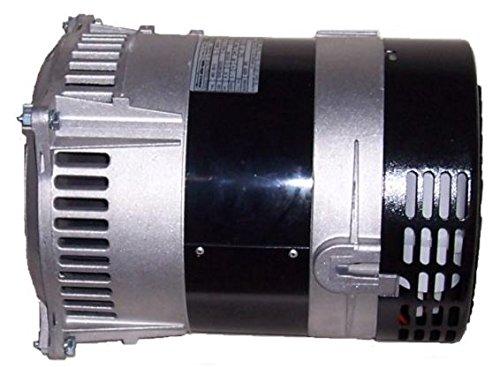 (3875 Watt Replacement Generator Head)