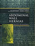 img - for Abdominal Wall Hernias: Principles and Management book / textbook / text book