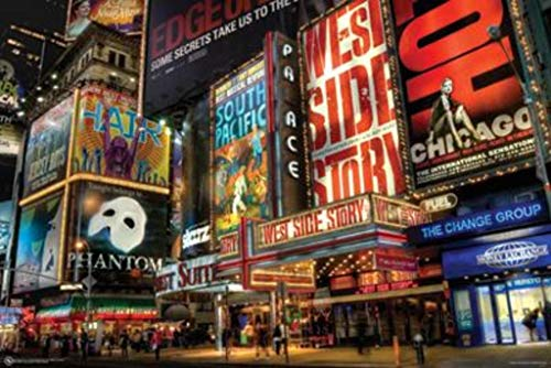 Laminated NYC Times Square New York City Decorative Poster Poster Print, 36x24 (New York City Poster Broadway)