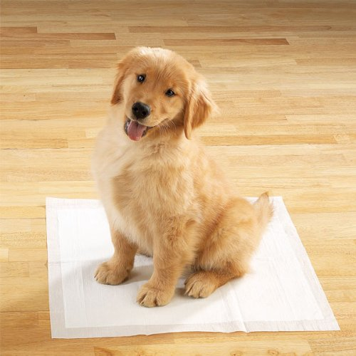 Housebreaking Super Absorbent - Leakproof Training Pads 100 Count