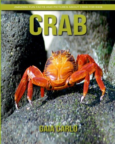 Crab  Amazing Fun Facts And Pictures About Crab For Kids