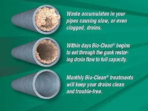 Bio-clean Drain Septic Bacteria, 2