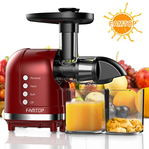 FAMTOP Slow Masticating Juicer