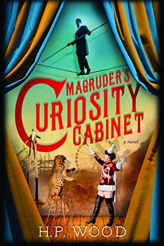 Magruder's Curiosity Cabinet: A Novel (Best Rides Coney Island)