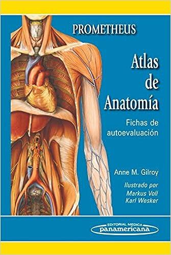 Atlas de Anatomía: Fichas de autoevaluación: Amazon.es: Anne Gilroy ...
