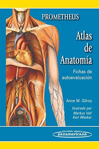 Prometheus Atlas de anatomia / Anatomy Flash Cards-Anatomy on the Go: Fichas de autoevaluacion / Self-evaluation Sheets