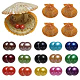 15PC Akoya Saltwater Twins Pearls Oysters, Cultured Love Wish Oysters with 30 Pearls Inside Red Round Pearl with Mixed Color (7-8mm)