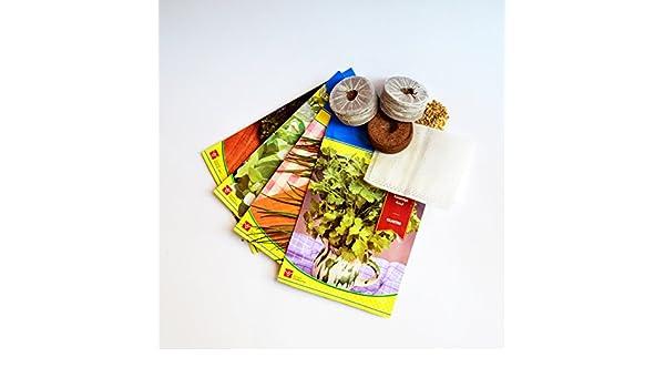 Kit de semillas 4 tipos de hierbas aromáticas para huerto urbano ...