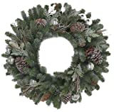 Polygroup TV209349 Frost Art Wreath, 24''